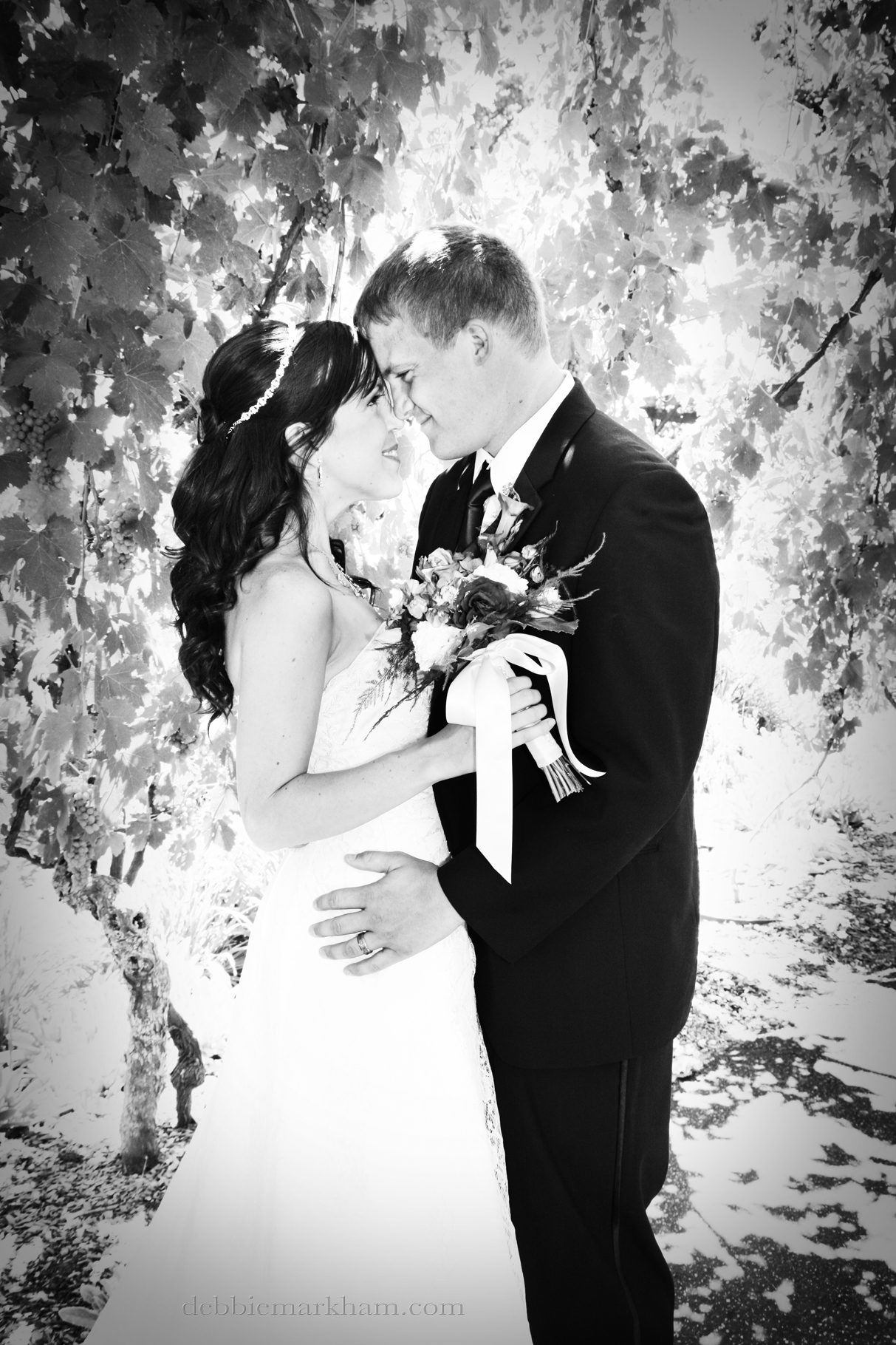 Cambria Photographer Debbie Markham-Paso Robles Wine Country Weddat Castoro Winery-under the grapevine trellis black and white