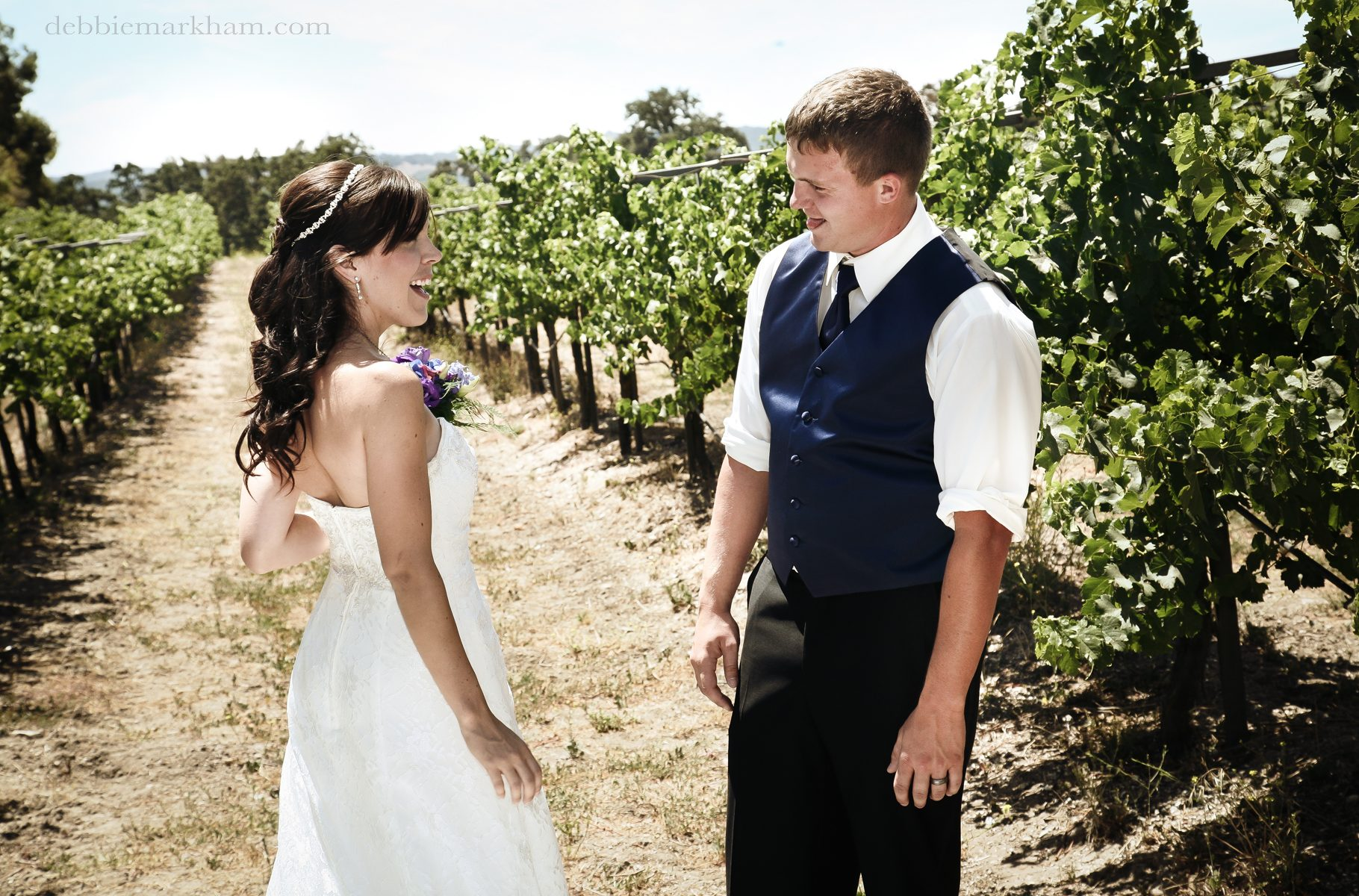 Paso Robles Wine Country Wedding at Castoro Winery photography