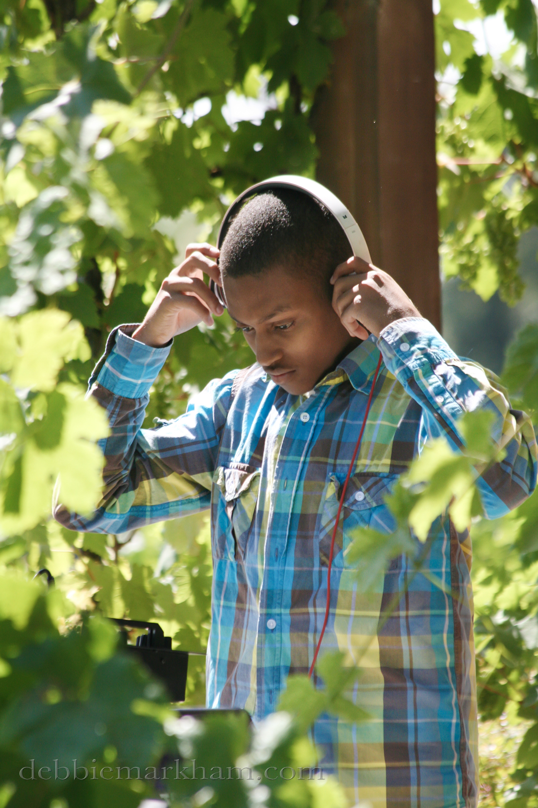 Cambria Photographer Debbie Markham-Professional Wedding Photos at Castoro Winery - DJ at outdoor reception in vineyard
