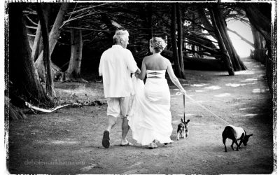 Happy Couple walking their dog after Intimate Wedding at Ragged Point in Big Sur, CA