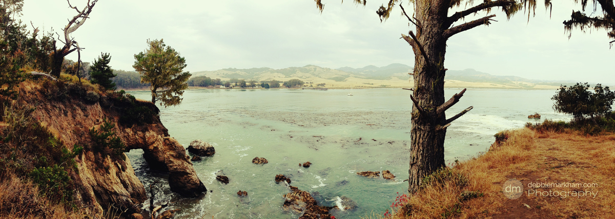 Debbie Markham Photography View from end of Peninsula Looking Back San Simeon Cove IMG_0129