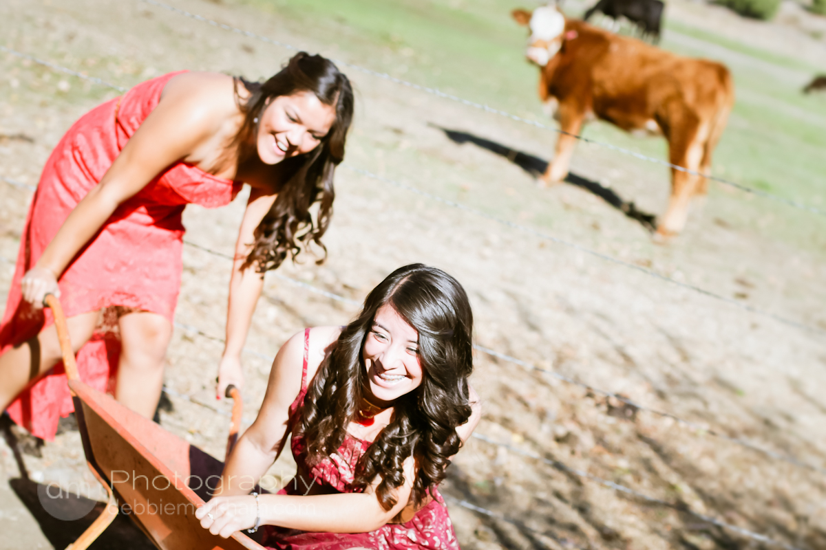Best Friends} Photo Shoot | Debbie Markham Photography in Cambria ...