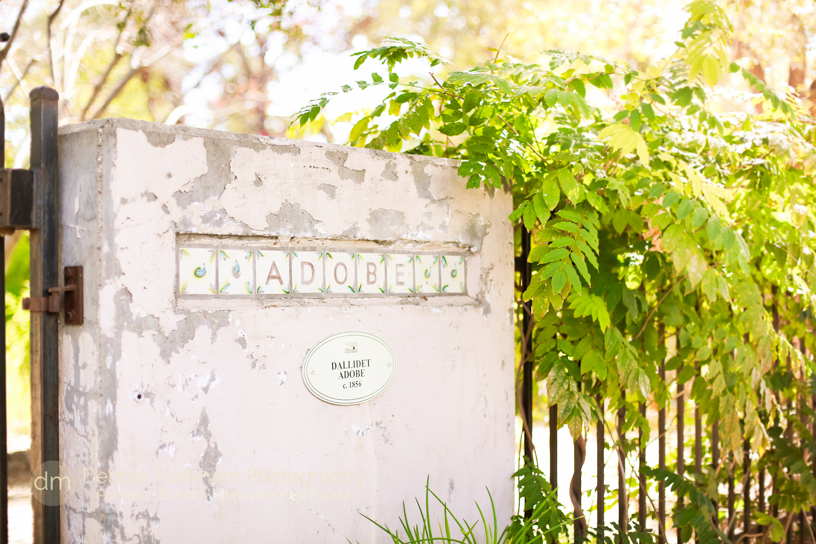 Debbie Markham Photography+Dalliedet House+San Luis Obispo+Garden Wedding+Fall Season-5077
