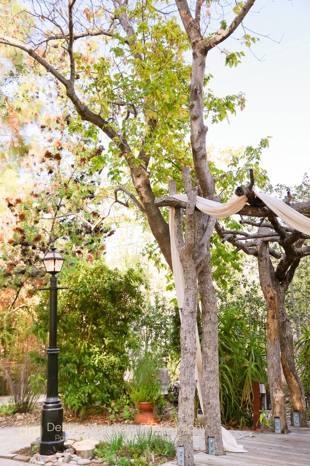 Debbie Markham Photography+Dalliedet House+San Luis Obispo+Garden Wedding+Fall Season-5217