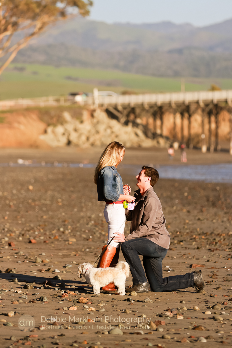 Proposal photogrtapher_Beach_Surprise Marriage Proposal_Engagement Photographer_Central Coast_San Luis Obispo-9403
