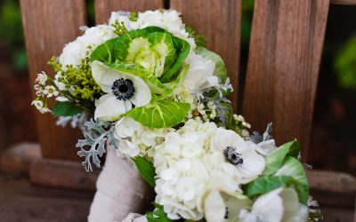Gay Wedding_Small Wedding_ Small Town Wedding_LGBT Wedding Photographer_Debbie Markham Photography_Cambria CA-0980