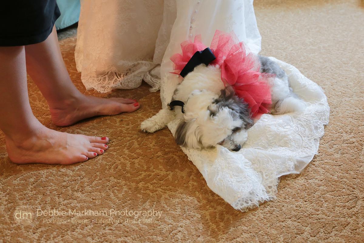Moonstone Beach Wedding_Christy+Phil_Reception at Robins_Wedding_Photographer_Debbie Markham_Cambria_CA-4485