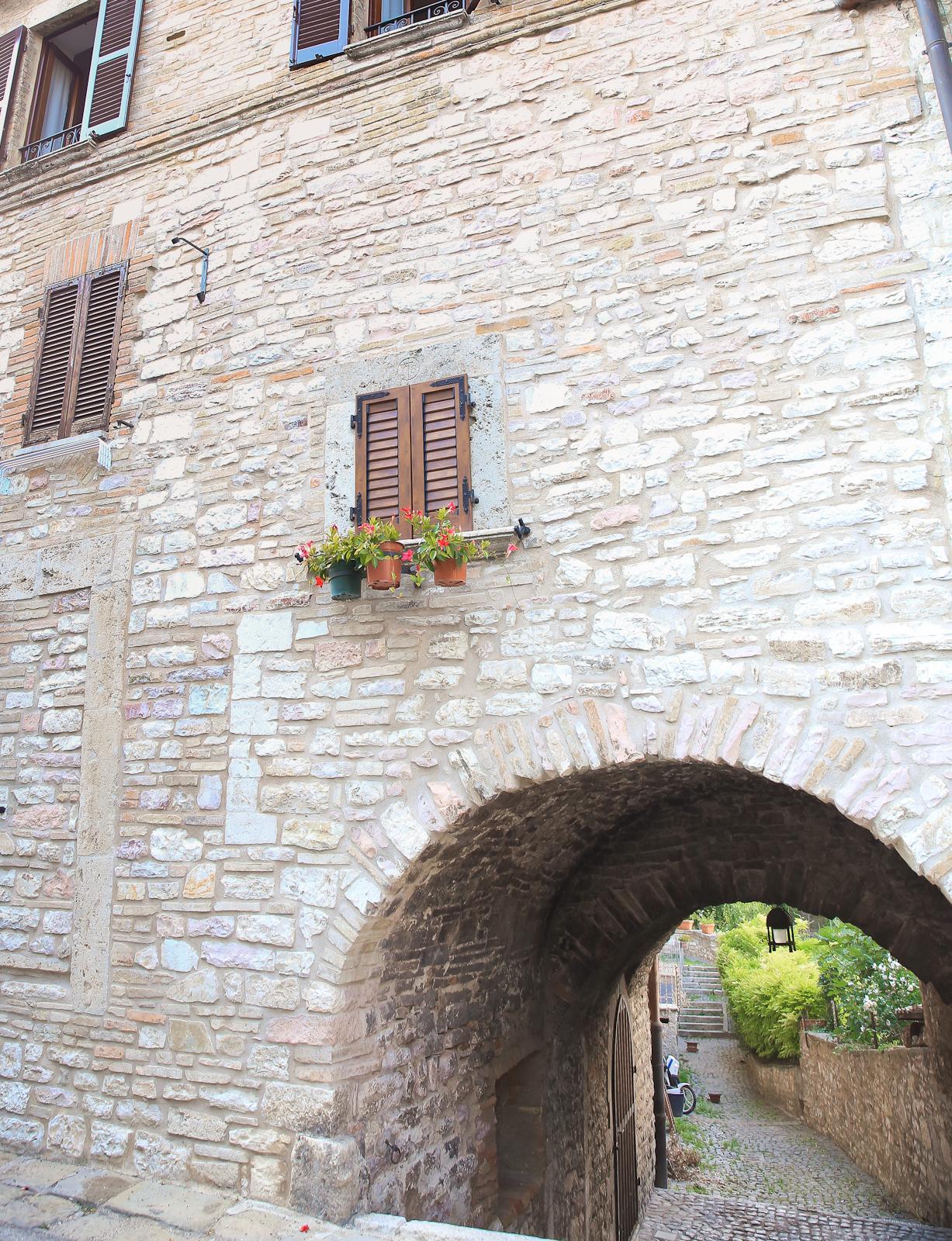 Assisi fb-1996
