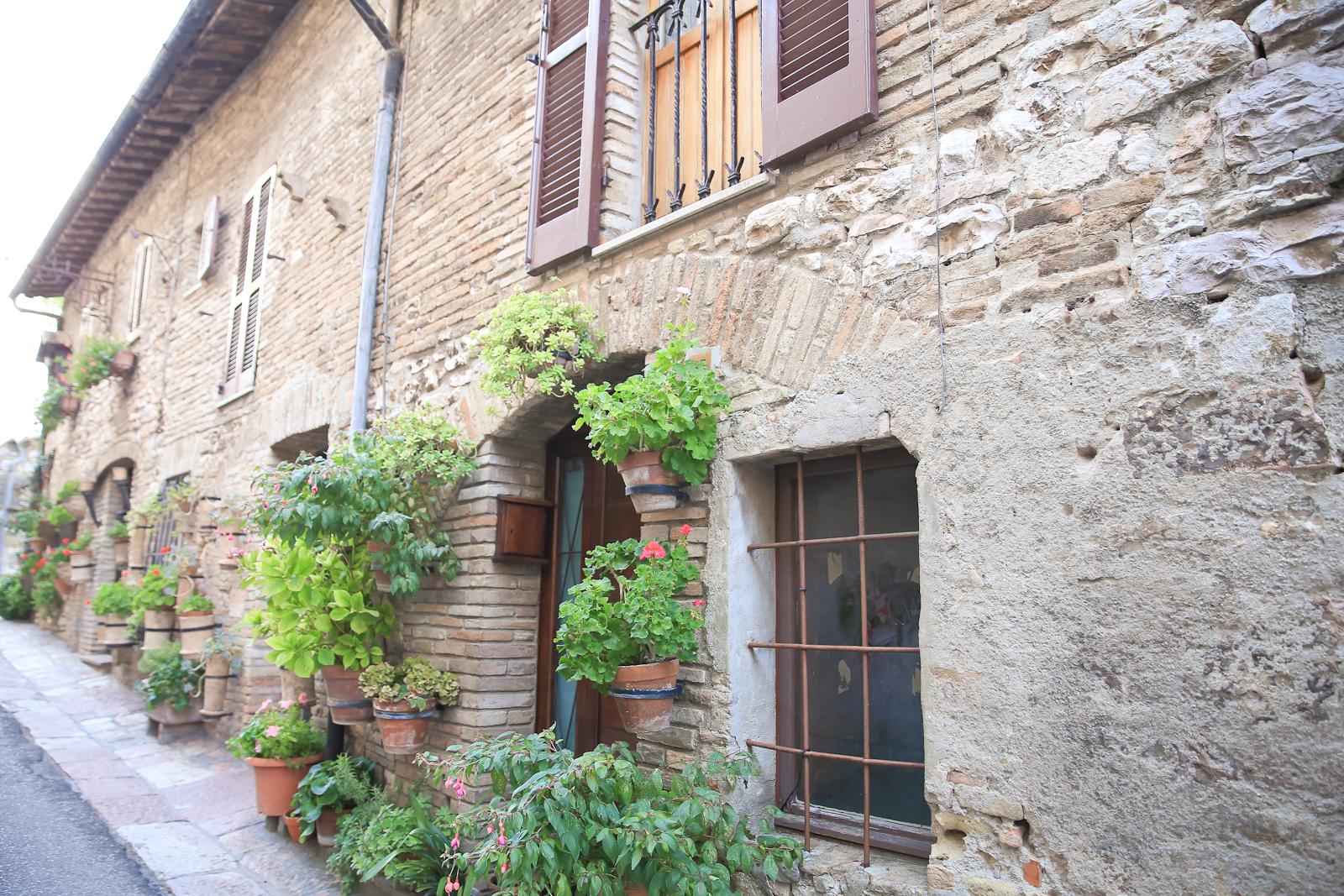 Assisi fb-1998