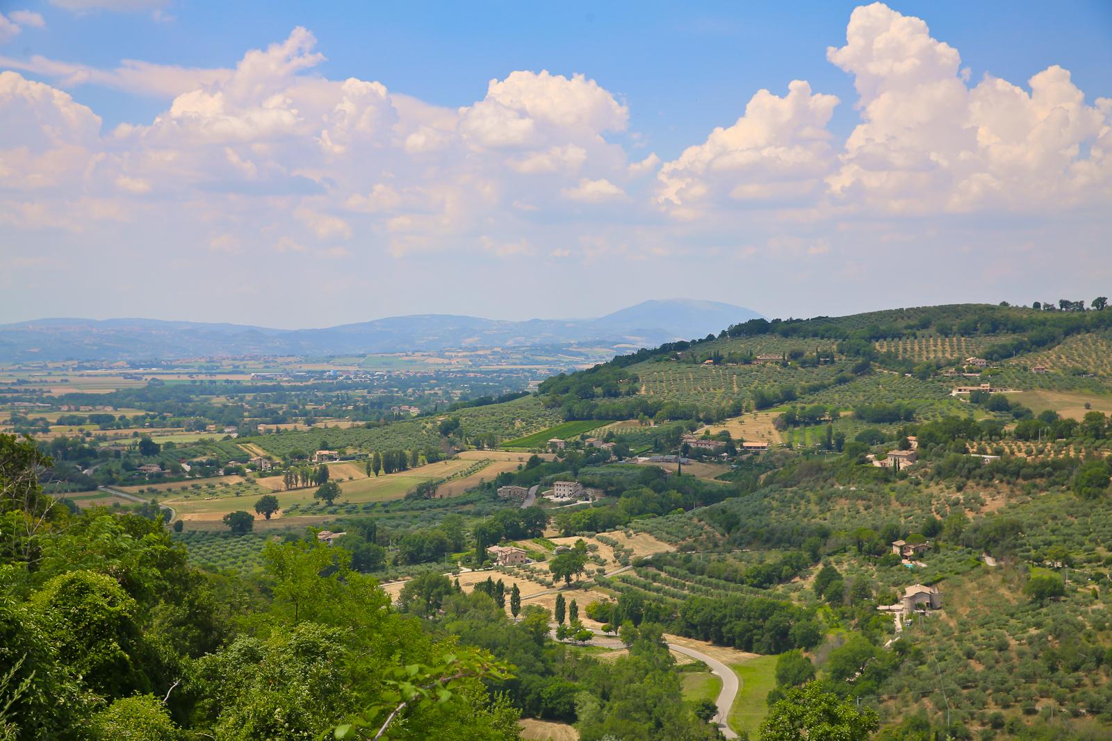 Assisi fb-2144