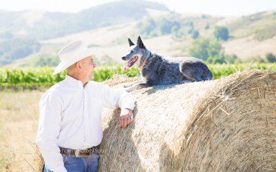Joe Prian_Cambria Realtor_Commercial Photographer_Debbie Markham_Head Shot_San Luis Obispo-0431