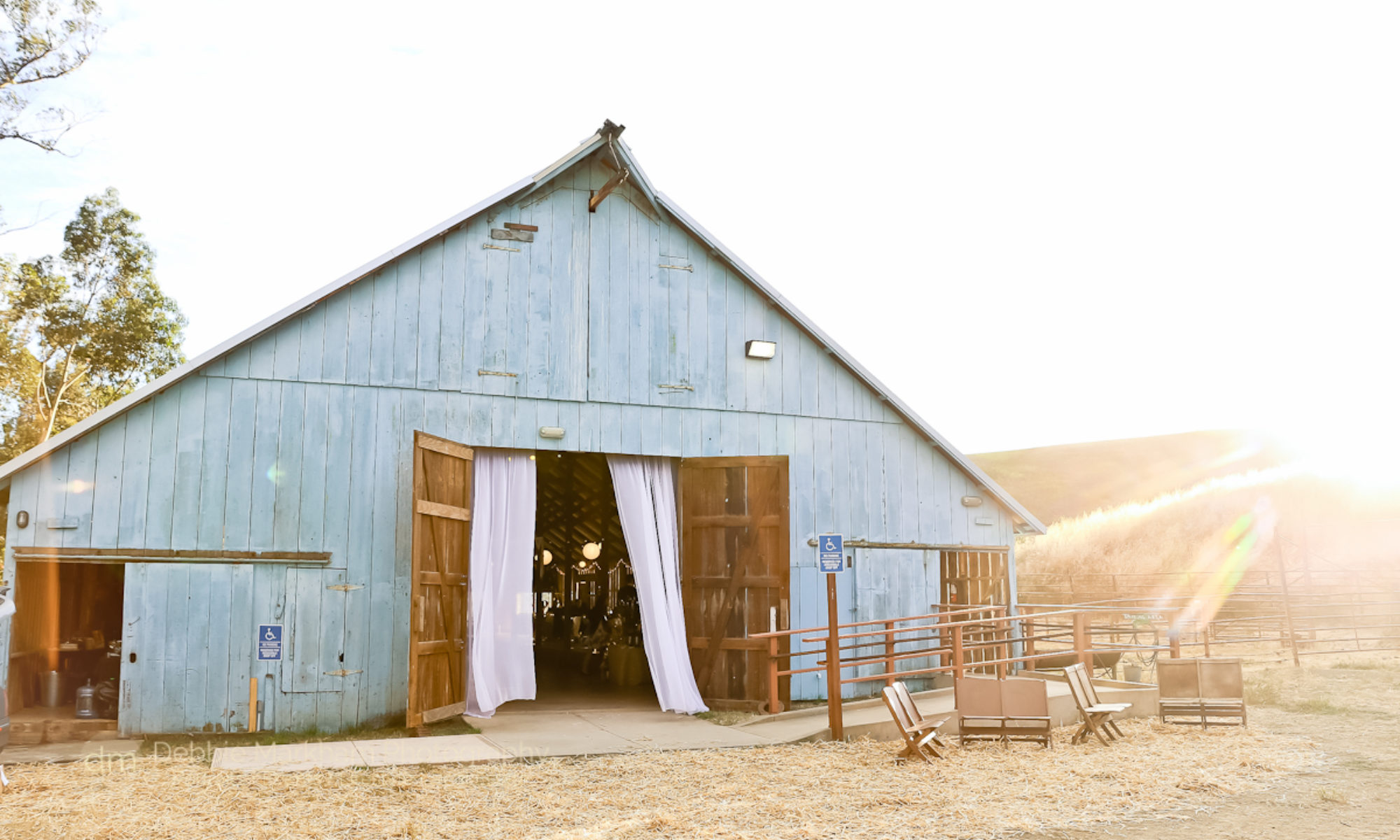 Debbie Markham Photography in Cambria // Wedding Photographer // Family Photographer // Cayucos Photographer // Morro Bay Photographer // Los Osos Photographer // Templeton Photographer // California Central Coast