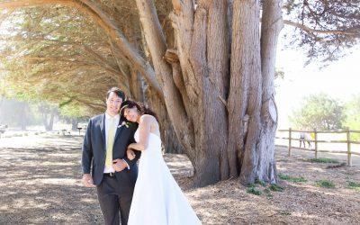 destination-wedding_small-wedding_big-sur_california-coast_ocean-view_gorda_wedding-photographer_debbie-markham-4478