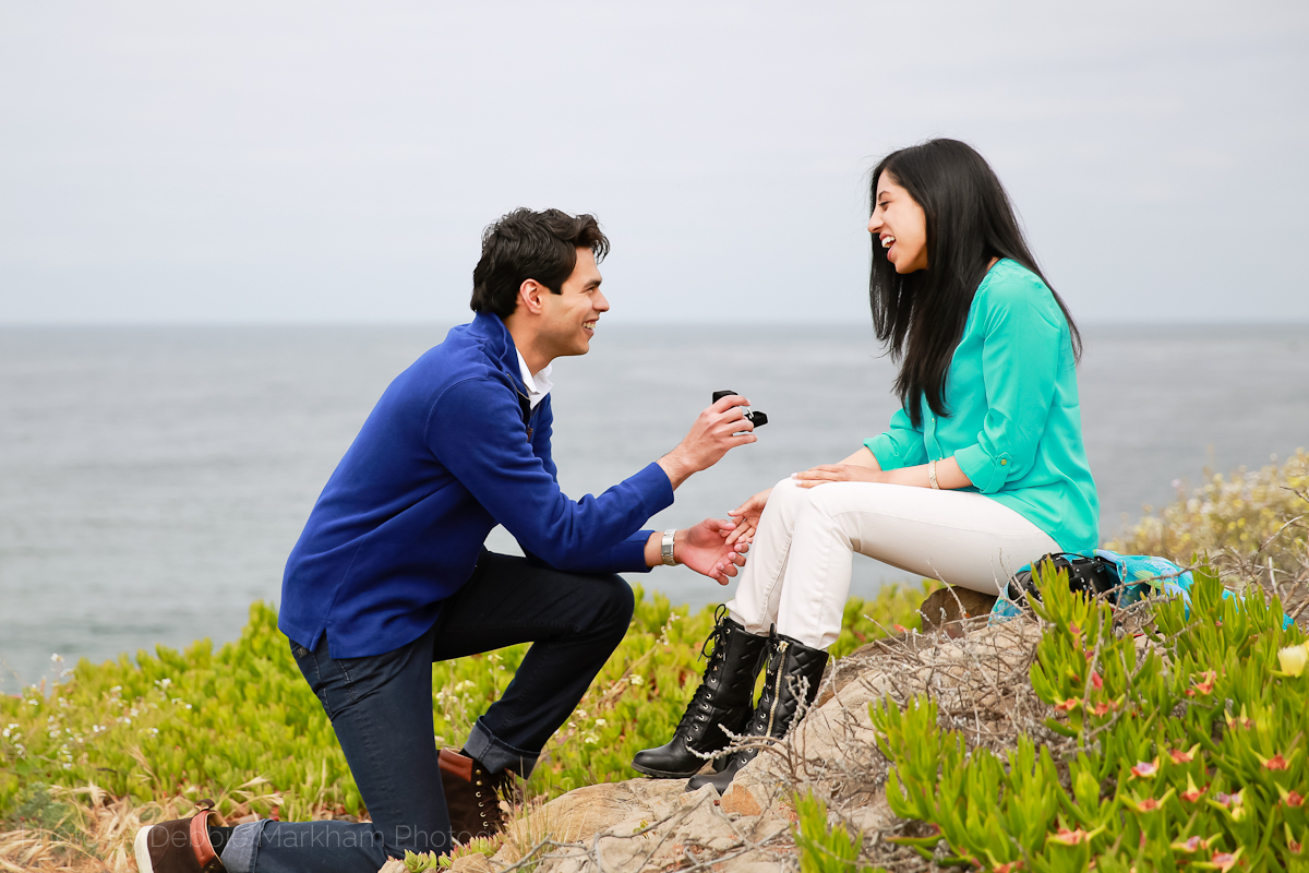 Surprise Proposal overlooking Moonstone Beach in Cambria