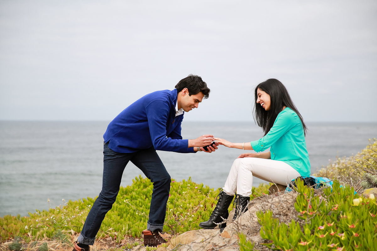 Surprise Proposal_Moonstone Beach_Cambria-8613