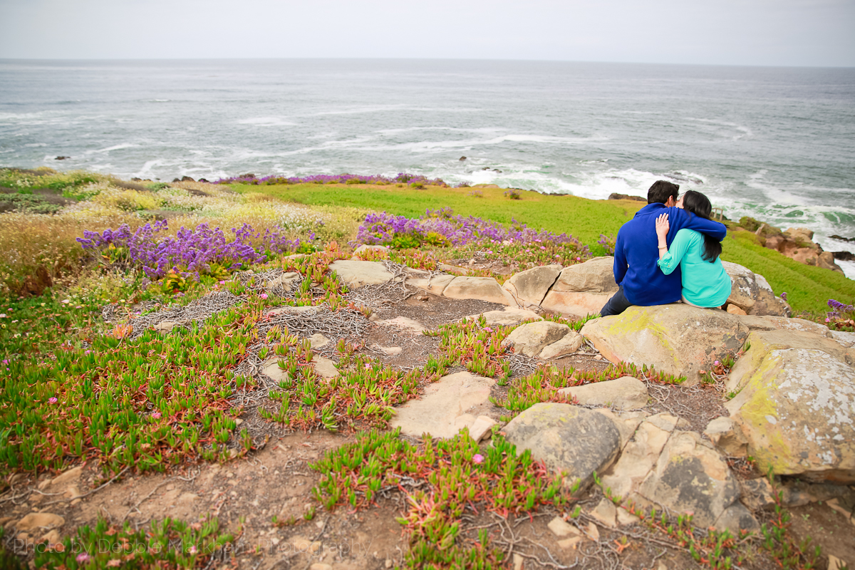 Surprise Proposal_Moonstone Beach_Cambria-8750